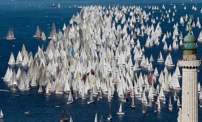 Lots of sailboats crowded together